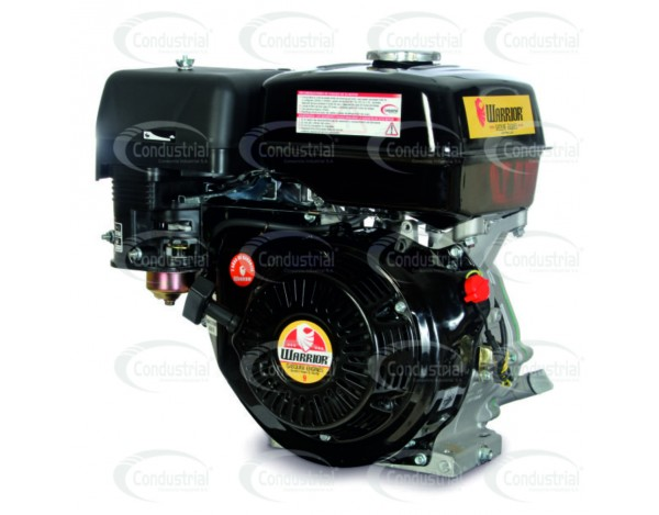 MOTOR A GASOLINA  - WARRIOR - ZS177F