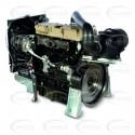 MOTOR DIESEL REFRIGERADO POR AGUA - LOMBARDINI - ED794449-1
